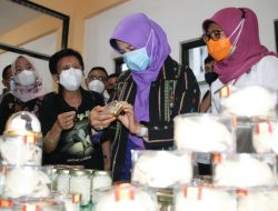 Potensi Industri Pencucian Sarang Walet di NTB, Bunda Niken: Tingkatkan Nilai Ekspor